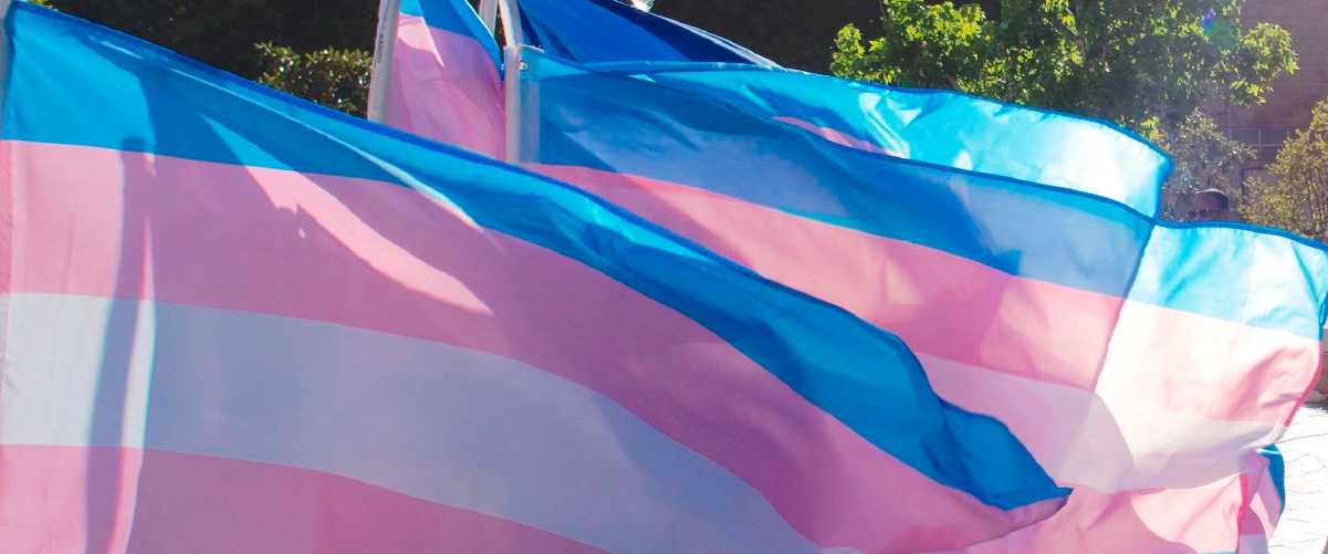 Learn About Trans March